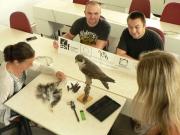Ornitologie (ZOO/ORNIT)